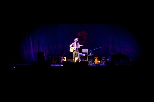 Chris Cornell-Phx-2015-11-04-008
