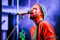 Dr Dog20180302_0011-1000pxsmall